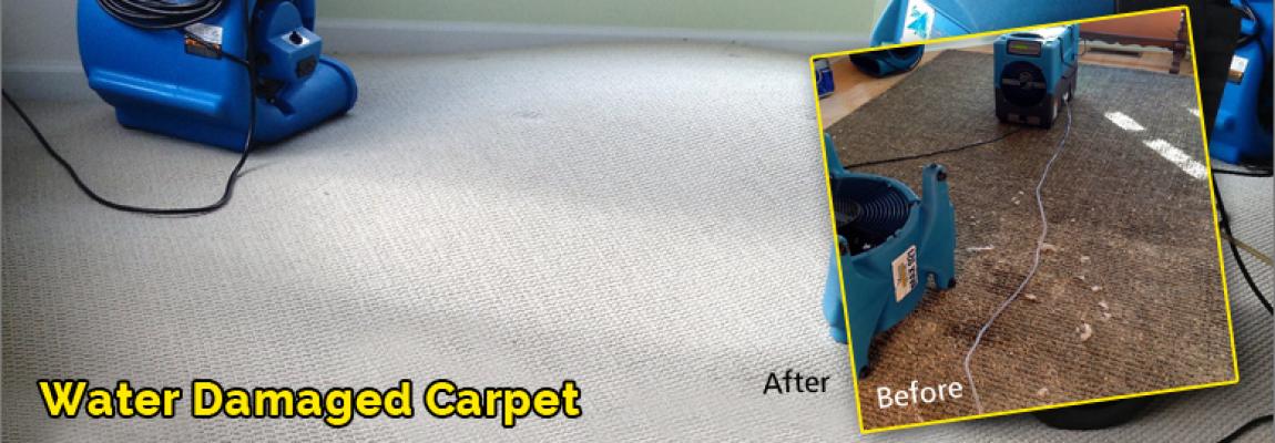 Water-Damage-Carpet-Malibu